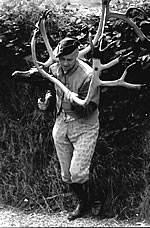 Abbots Bromley Horn Dancer
